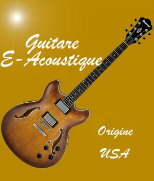 Guitare electro acoustique usa