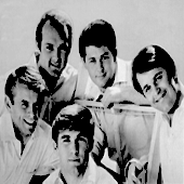 The beach boys 1965